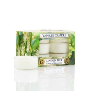 Linden Tree Tea Lights Yankee Candle