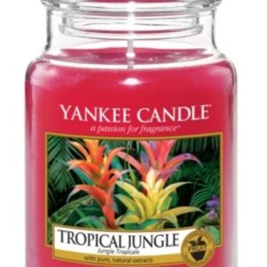 Tropical Jungle Large Jar Yankee Candle