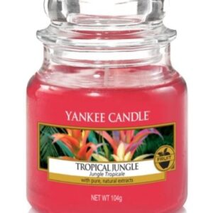 Tropical Jungle Small Jar Yankee Candle