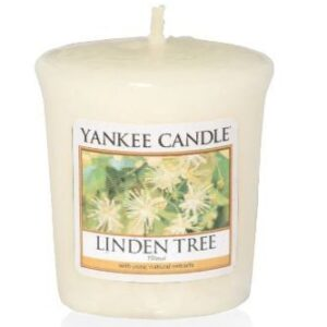 Linden Tree Votive Yankee Candle